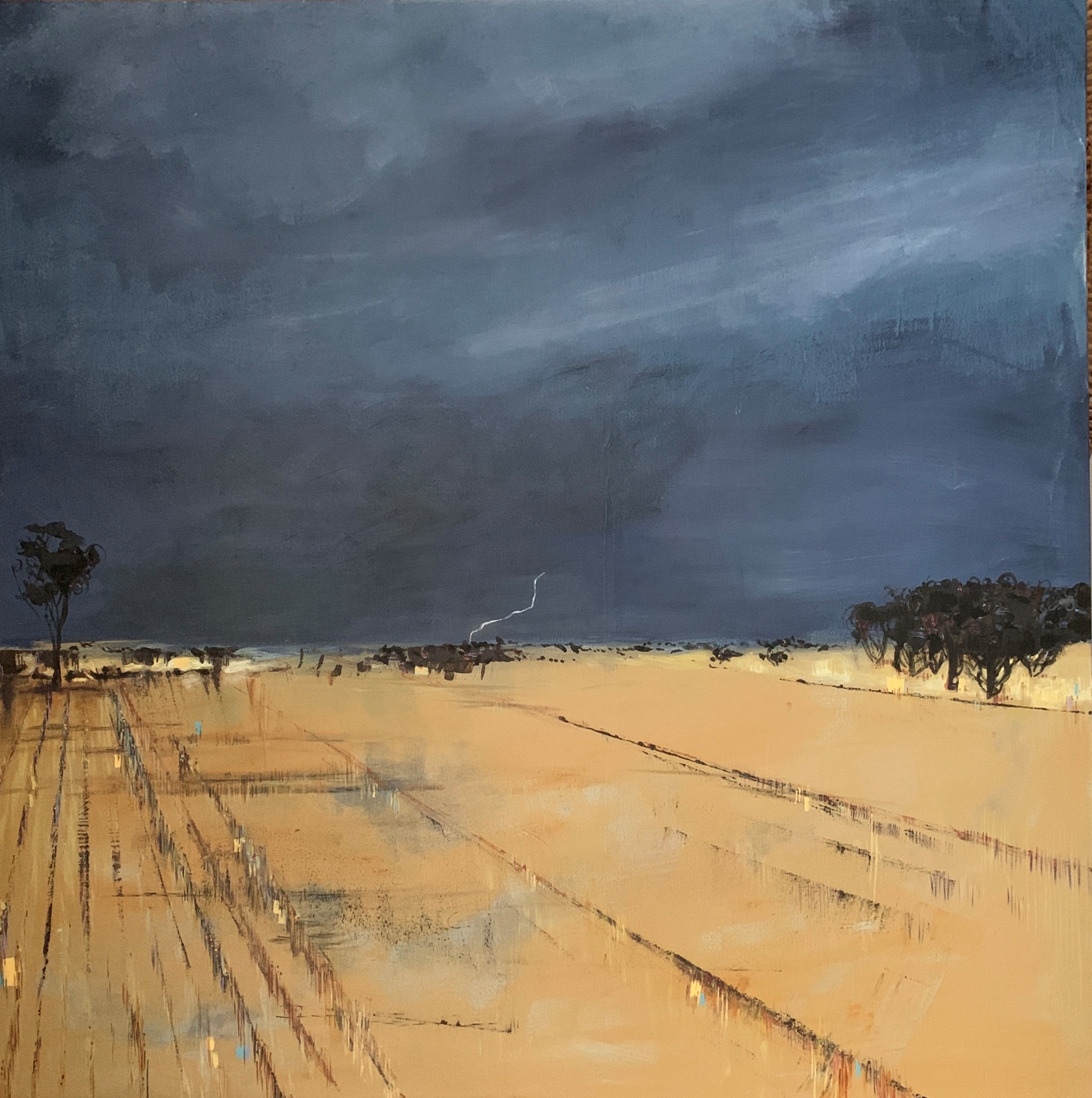 Storm over the Wheatbelt